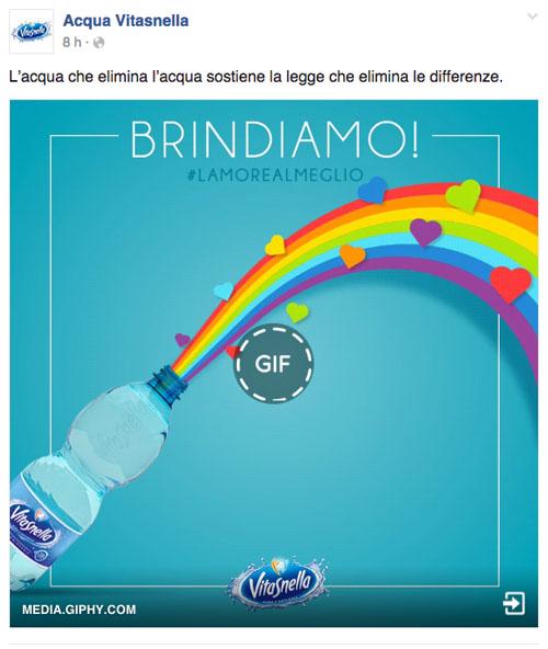 vitasnella-gay